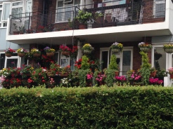 A House covered in flowers on Portobello Road.